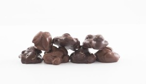 Guelph_ChocolateNutClusters_CandiesOfMerritt